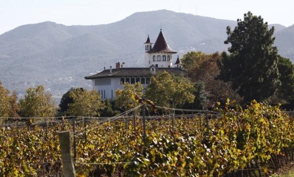El vino español bate el récord de exportaciones en 2018