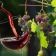 Diferencias entre un vino Denominación de Origen y un Vino de la Tierra